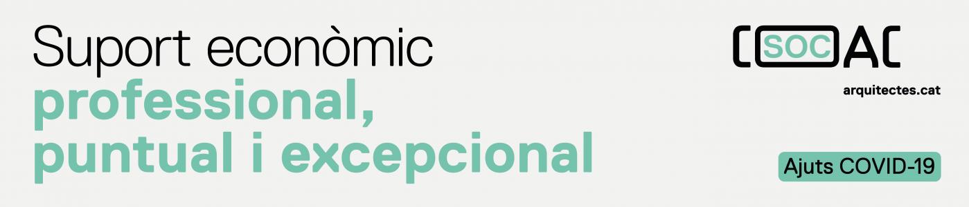 Suport econòmic professional puntual i excepcional