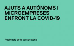 Publicades les convocatòries d'ajuts a autònoms i microempreses i a persones afectades per ERTO