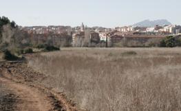 Imatge de Sant Cugat.