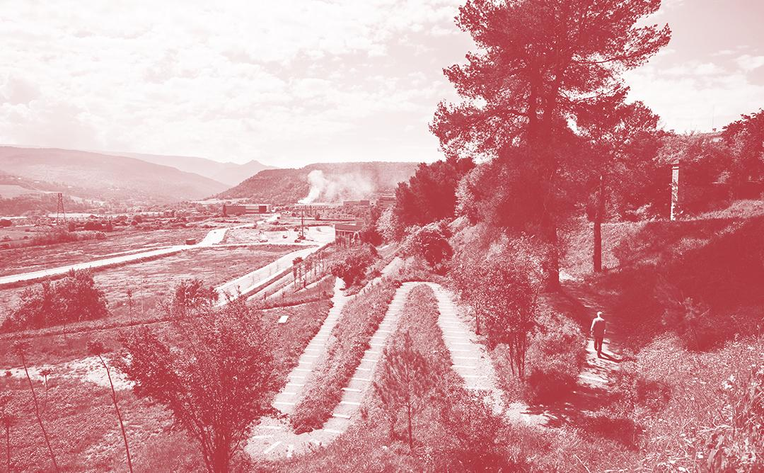 Imatge paisatge al camp