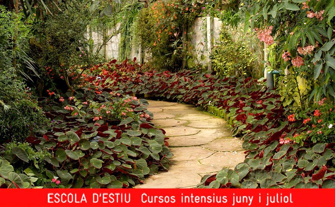 disseny jardins paisatgisme arquitectura