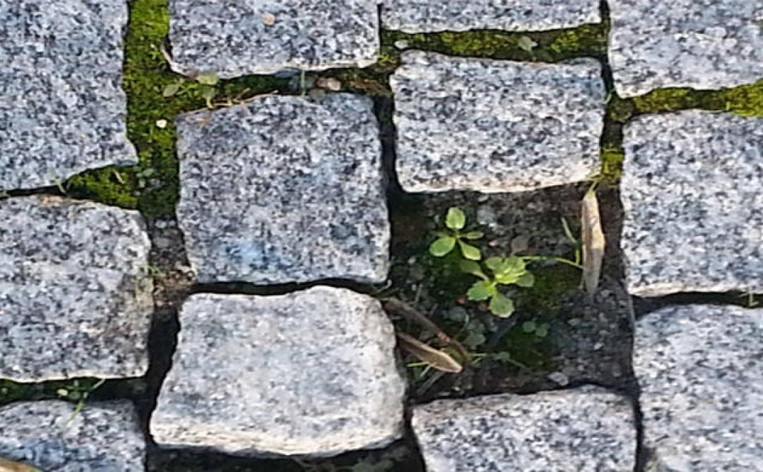 Tradicional paviment portuguès