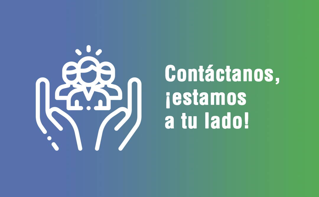 imatge organitzacio