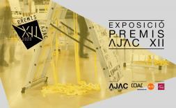 Premis AJAC XII